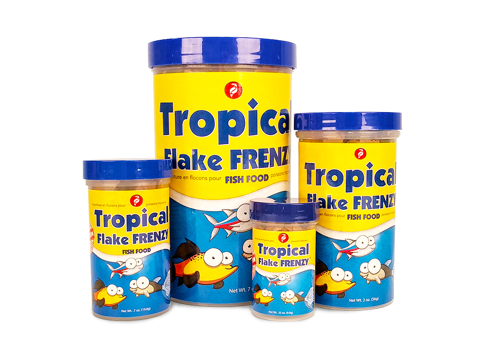 Tropical Fish Food Size Line Up